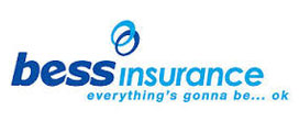 BESS Insurance